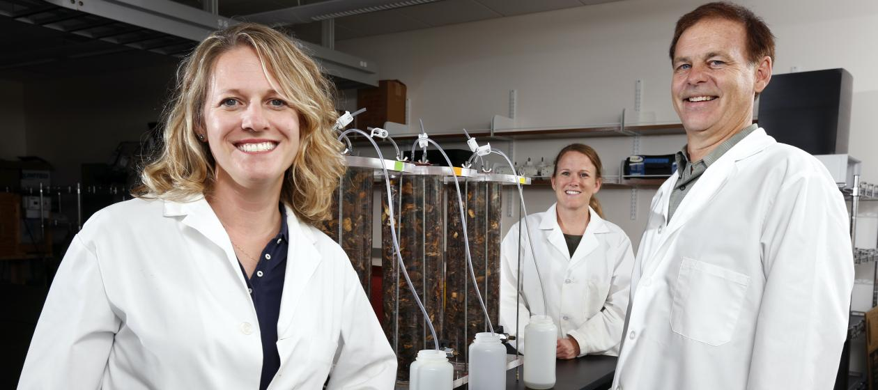 Michelle Soupir, 2021 Mid-Career Achievement in Research Awardee